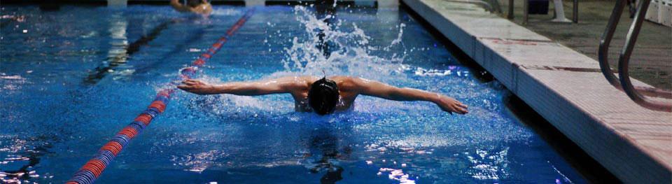 Lane Swimmer
